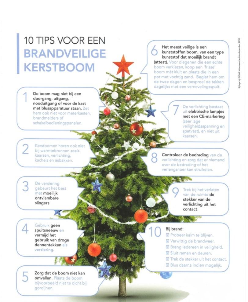 10 Tips Voor Een Brandveilige Kerstboom Bnbsecurity